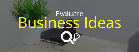 Evaluate Business Ideas